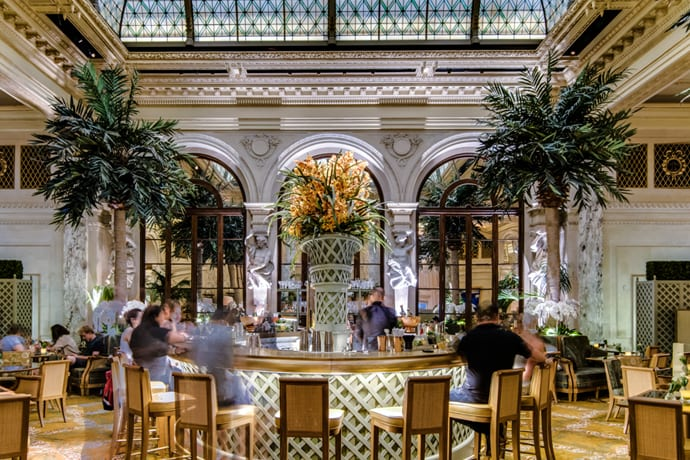 A Decent Excuse to Hit The Plaza's Palm Court